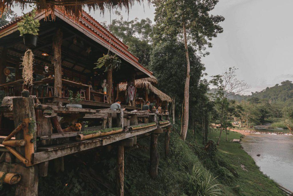 กาแฟโรบัสต้าป่าช้างขาว